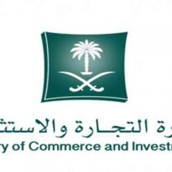 مجلس الوزراء يقر تعيينات وترقيات ونظام الشركات المهنية ومشروعات بعدة مناطق