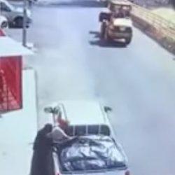 فيديو.. مواطن يعالج ذئبا مصابا لأكثر من 3 شهور ويطلق سراحه بعد تماثله للشفاء