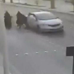 """بعد مشادة كلامية.. سائق """"هايلوكس"""" يدهس شخصين متعمداً في أبوعريش (فيديو)"""