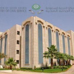 7 حالات يعتبر فيها موظف الدولة «تاجر»