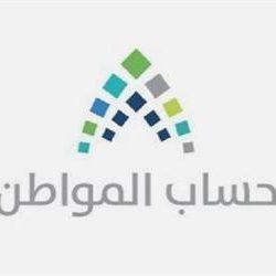 استئناف الرحلات الجوية بين المملكة ومصر اليوم وغداً لتمكين المواطنين الزائرين من العودة