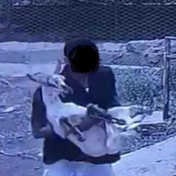اتضح أنه زوجها.. مصادر: القبض على طاعن امرأة أمام محل تجاري بجدة
